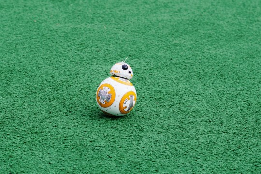 Star Wars robot BB-8 rolling on turf